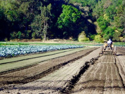 Great Minds / Microbes: Keys to our Health & the Health of our Soil