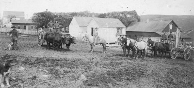 Point Reyes Peninsula Ranching History Talk with Dewey Livingston