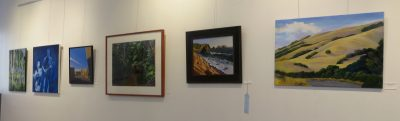 Marin Society of Artists 89th Annual Members Juried Show