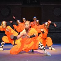 primary-Shaolin-Warriors--The-Legend-Continues-1483486764
