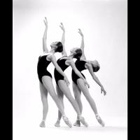 Marin Dance Theater