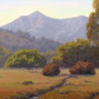 One Mountain, One Tam: Baywood Artists Celebrate Twenty Years