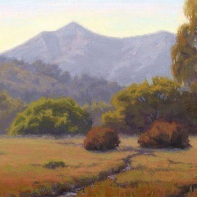 One Mountain, One Tam: Baywood Artists Celebrate Twenty Years