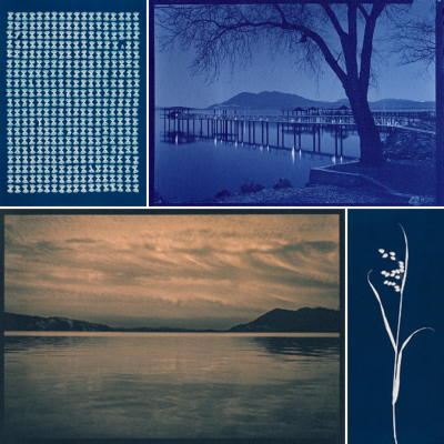 Photography Workshop - Cyanotype, Printing Blue and Beyond