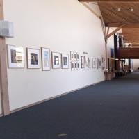 Bay Model Visitor Gallery