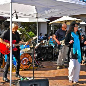 Call for Musicians: Concerts in the Plaza