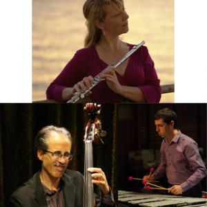 Gaea Schell Trio