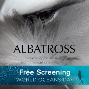 Albatross - Free Screening