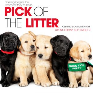 Pick of the Litter - w/ Filmmakers & Guide Dogs