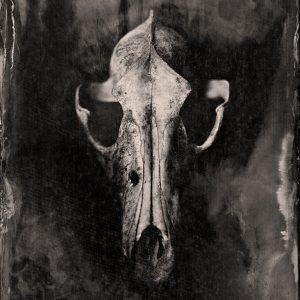 Tintype Photography Workshop