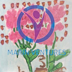 Marin Ventures: Newer Artworks