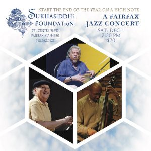 Vince Delgado Jazz/World Music Trio