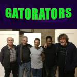 Gatorators