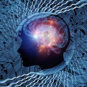TEDx Salon: The Brain and Consciuosness