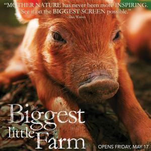The Biggest Little Farm w/ filmmaker John Chester