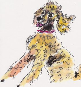 Dog Days of August – Canine Art Exhibit and Fundraising Event