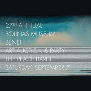 27th Annual Benefit Art Auction