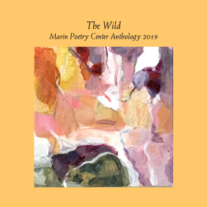 Poetry Anthology Launch 2019