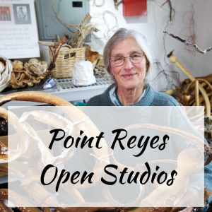 Point Reyes Open Studios
