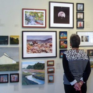 Hardly Strictly Mini: A Biennial Benefit Exhibition