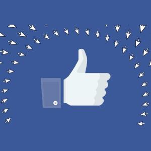**POSTPONED** Roger McNamee: Deeper Inside the Facebook Catastrophe