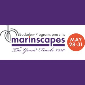 LOCAL>> MarinScapes 2020