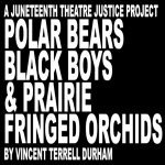 LOCAL>> Juneteenth Reading: Polar Bears, Black Boys & Prairie Fringed Orchids
