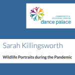 LOCAL>> Sarah Killingsworth – Wildlife Portraits During the Pandemic