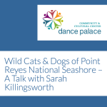 LOCAL>> Wild Cats & Dogs of Point Reyes National Seashore with Sarah Killingsworth