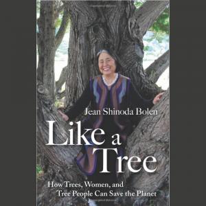 LOCAL>> Jean Shinoda Bolen – Like a Tree