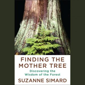 LOCAL>> Suzanne Simard – Finding the Mother Tree