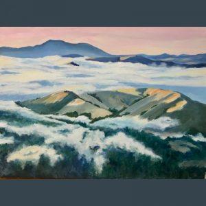 LOCAL>> Kathleen Goodwin – The Astonishing Beauty of Marin