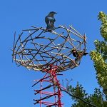 Where Have All the Birds Gone? – Community Event/Reception