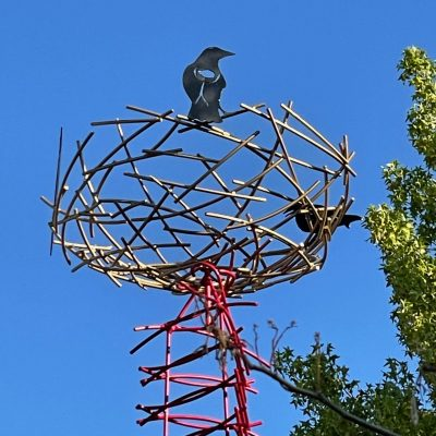 Where Have All the Birds Gone? – Community Event...