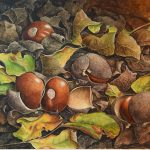 LOCAL>> Painting a California Buckeye – with Lucy Martin