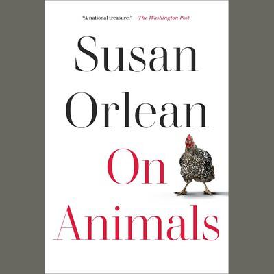 LOCAL>> Susan Orlean – On Animals